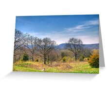 Mother Natures Canvas Greeting Card