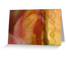 Behind Lace - JUSTART ©  Greeting Card