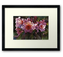 """Watercolor """"Autumn Gold"""" Rhododendron  Framed Print"""