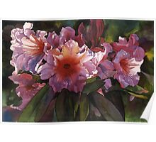 "Watercolor ""Autumn Gold"" Rhododendron  Poster"