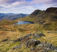 The Langdale Pikes - Cumbrian Lake District by David Lewins