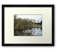 Weeping Reflections Framed Print