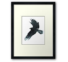 Crow Wings Framed Print