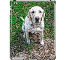 Forlorn Request - Dog Art By Sharon Cummings iPad Case/Skin