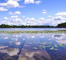 Sunken Dock by Kyle Hudak
