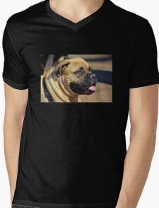 Bull Mastiff Pup Mens V-Neck T-Shirt