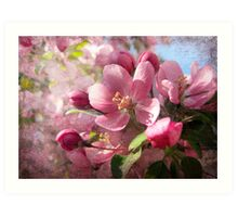 Pink Dreamland Art Print