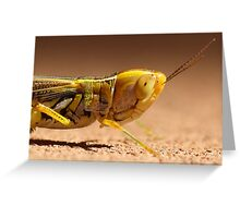 Make sure you get my Best side! Greeting Card