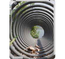 abstract landscape lake iPad Case/Skin