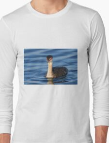 Red Eyes & Blue Water Long Sleeve T-Shirt