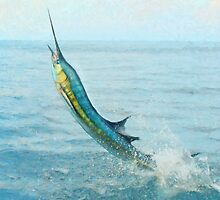 Sailfish by Walter Colvin
