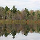 Perfect Reflection by John Carpenter