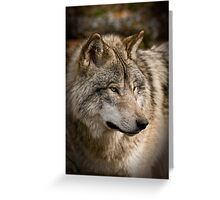 Directional View Greeting Card