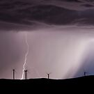 Sky Lights by Helen Simpson