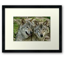 Glued to the hip! Framed Print