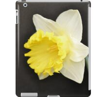 Soft Yellow Daffodil iPad Case/Skin