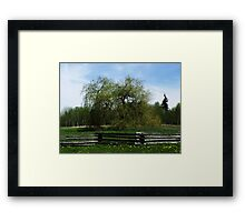 spring weeping willow Framed Print