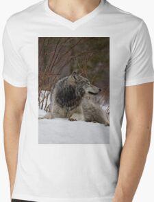 Tranquil Mens V-Neck T-Shirt