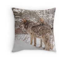 Sibling Love - Parc Omega, Montebello, PQ Throw Pillow