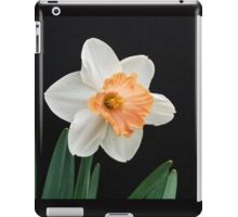 Orange and White Daffodil Against Black iPad Case/Skin
