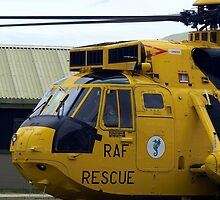SAR Sea King Falklands by Stephen Kane