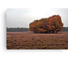 Heath and Leaves. Canvas Print