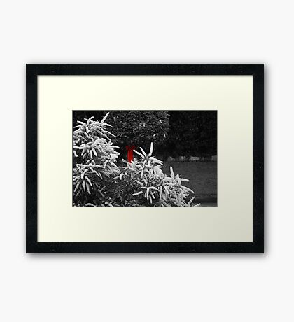 The Red Bow Framed Print