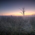 Winter is Coming - Badgery's Creek NSW by Malcolm Katon