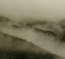 landscapes #58, mist by stickelsimages