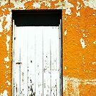 old door by Lynne Prestebak
