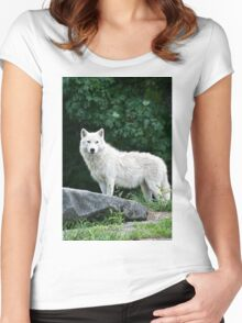 Arctic Wolf  Women's Fitted Scoop T-Shirt