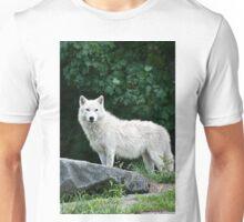 Arctic Wolf  Unisex T-Shirt