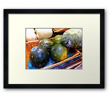 Ripe and Luscious Melons Framed Print