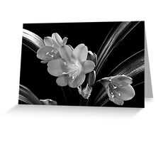 Mother's Clivia Lily Greeting Card