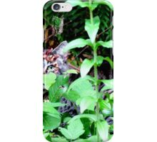 Wild Beast of the Forest iPhone Case/Skin