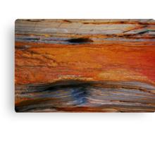 rustic rock Canvas Print
