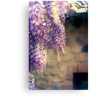 Purple Hanging Flowers Canvas Print