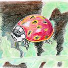 A Ladybug by Kashmere1646