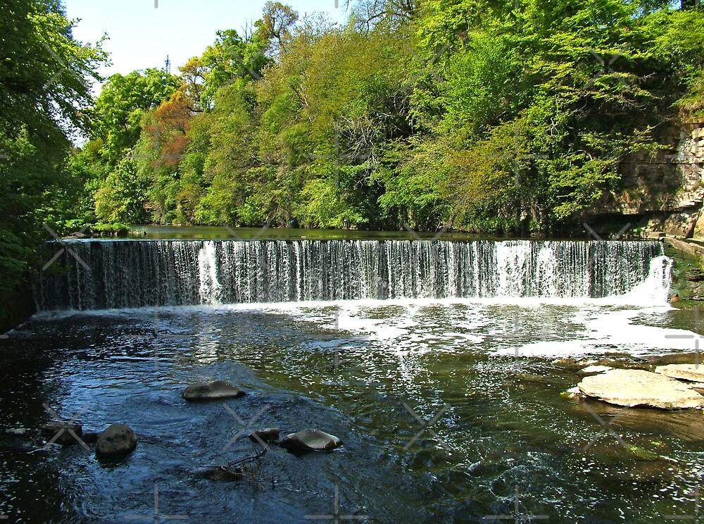 Fairafar Mill Weir by Tom Gomez