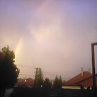 Rainbow by fotista