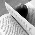 Bookmark by villrot