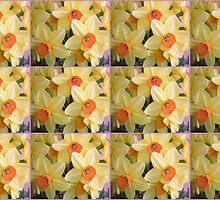 Feast of Daffodils by karenkirkham