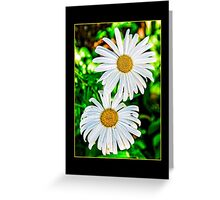 two daisies Greeting Card