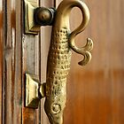 Fish Doorknocker - Malaga by evilcat