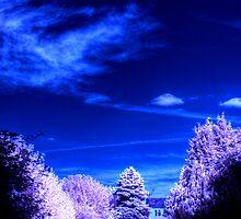 Very Blue Skies by mikepom