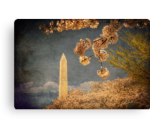 The Washington Monument Canvas Print