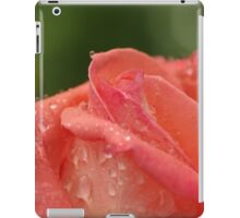 Folklore - my garden, Ottawa, ON iPad Case/Skin