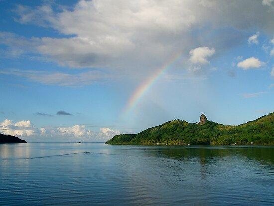 Heading Toward the Rainbow by Lucinda Walter