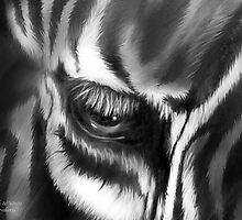 Zebra Black & White by Carol  Cavalaris