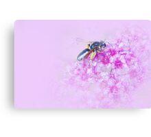 Bzzzzy Bee Canvas Print